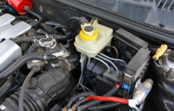 Is Your Vehicle Thirsty? 5 Important Fluids Your Car Needs to Stay Hydrated